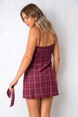 How Would You Feel Dress -Maroon Check Stripe