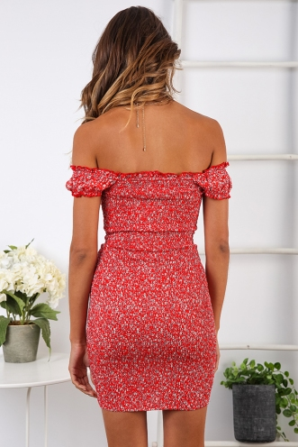 In The Summer Dress - Red Floral