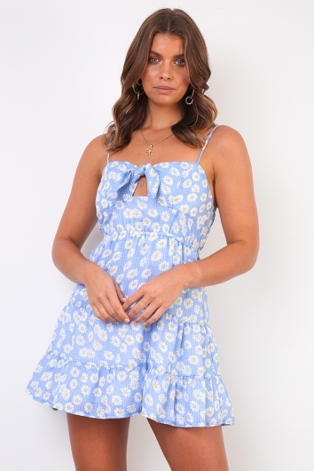Call Me Daisy Dress - Blue Floral