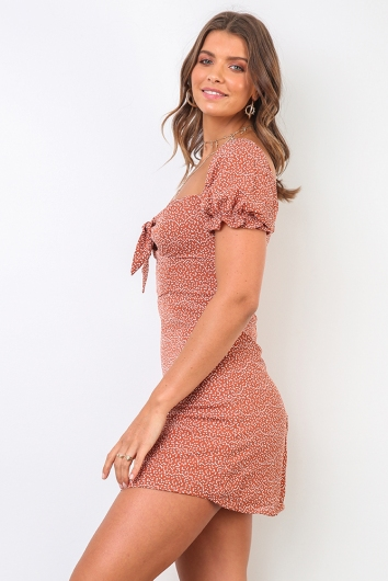 Giselle Dress - Brown Print