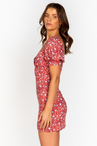 Ms Jackson Dress Red Floral