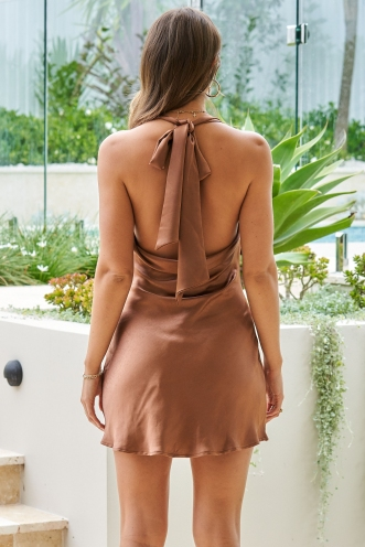 Kara Dress Brown