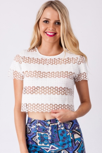 Chocolate Fortune Cookie Top-White