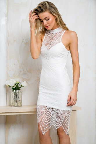 Cutout Lace Bodycon Dress - White -SALE